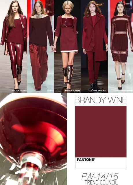 brandy-wine-color-fall-2014