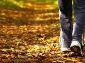 Camminare nella natura combattere stress, ansia depressione