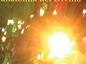 Advaita: anatomia divino [Faenza]