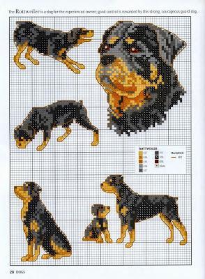 Grande raccolta di schemi a punto croce a tema cani for Schemi punto croce animali gratis