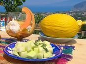 Coppe macedonia confettura melone spuma yogurt allo zenzero.