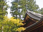Japan rail luoghi pieni spiritualità