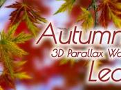 Autumn Leaves Gyro miglior live wallpaper autunnale Android!