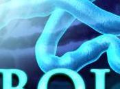 Ebola: sintomi, prevenzione utili consigli