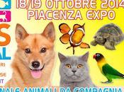 Petsfestival 2014 specie rare tutto mondo. mostra-evento avvicinare bambini agli animali compagnia