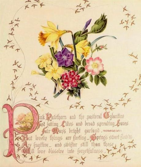 The Country Flowers of a Victorian Lady by Fanny Robinson.
