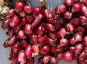 Cipolla rossa Tropea