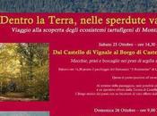 Escursioni guidate alla scoperta degli ecosistemi tartufigeni Montaione