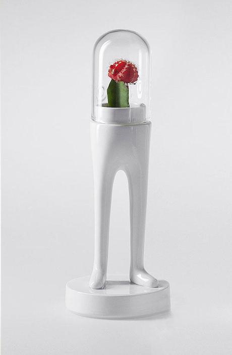 Funny-Creative-Terrariums_ilovegreen_5