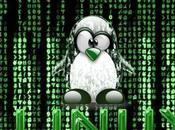 Linux, sistema operativo facile usabilità, difficile gestione