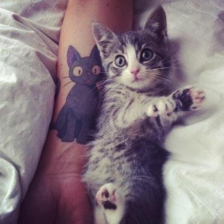 cat-tattoos-2