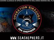 [CS] Lush Operazione Siracusa: ecopirati famosi Mondo insieme proteggere l'area marina Plemmiro