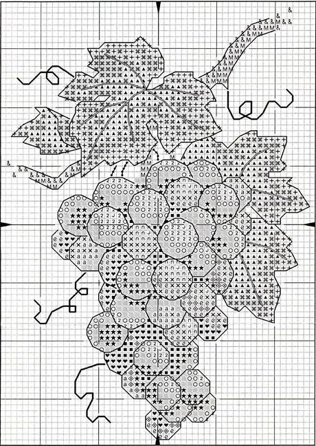 Schema Punto Croce Grappolo Duva Paperblog