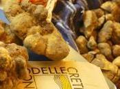 Sabato novembre live dalla Mostra Mercato Tartufo Bianco delle Crete Senesi