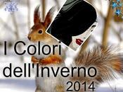 colori dell' inverno