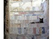 Akko: sottoterra templari ospitalieri