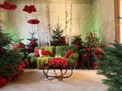 idee copiare Stelle Natale