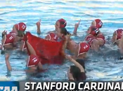 Stanford Cardinal Ncaa 2014 Women's Waterpolo Champions