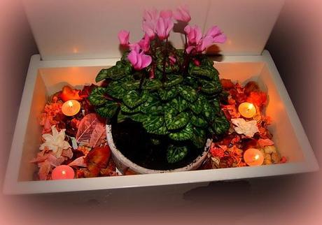 Arredare con i fiori paperblog for Arredare con i fiori