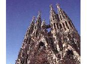 Barcellona divertimento vita notturna