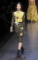 Dolce & Gabbana donna a/i 2011/12: Review