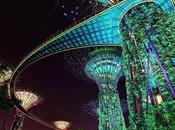 Supertree Grove Lighting wonderful Singapore