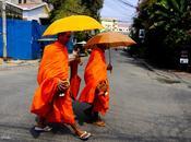 Buddhismo Cambogia: Scatti Monaci Phnom Penh