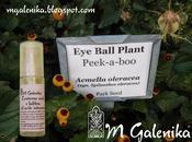 Contorno occhi labbra all'acido ialuronico