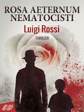 Intervista a Luigi Rossi
