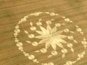 Migliori crop circles 2009
