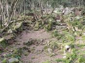 L'insediamento nuragico Brunku s'Omu (Villaverde Oristano)