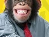 Argentina: tribunale concede scimmia diritti umani.