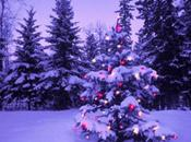 Natale laico