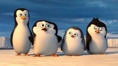 FILM - I pinguini