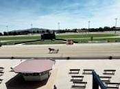 Ippica: Vinovo l'ultima firma 2014 Vessichelli nella Tris Quarte Quinte