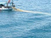 Barche Barca!