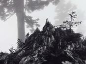 lezioni Ansel Adams sulla fotografia
