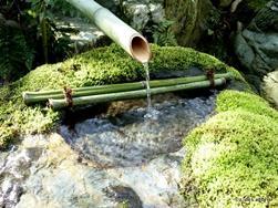 Idee giardino fai da te paperblog for Laghetto per papere