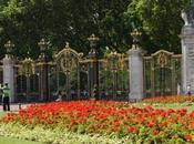 parchi Londra: Green Park