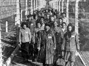 Giornata della Memoria 2015 Tutti programmi ricordo dell'Olocausto