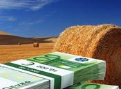 Pasticcio terreni agricoli: chiarezza
