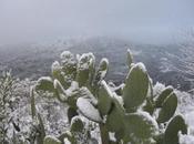 MeteoSicilia: arrivo pioggia, temperature calo neve bassa quota