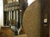 diretta Umbria Museo della civiltà dell'Olivo Trevi tappa dell'itinerario avvicinamento Expo 2015