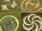 suono creare crop circles?