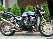 Kawasaki 1100 Moon Field