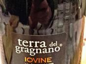 Penisola Sorrentina Gragnano 2013 rosso frizzante Terra Vini Iovine