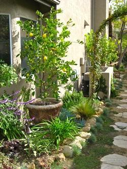 Giardini piccoli foto a ciascuno il suo piccoli giardini - Foto piccoli giardini ...