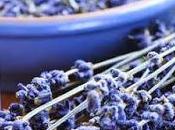 """""""Aromaterapia: Piante Fiori Coltivare nell'Orto Giardino"""""""