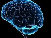 """""""Quello Strano Magnetismo circonda nostro Cervello"""""""