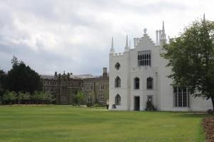 Strawberry Hill by Paola Cacciari